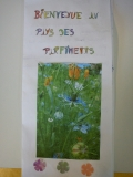 les_parfumeurs (8)