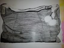 sac (8)